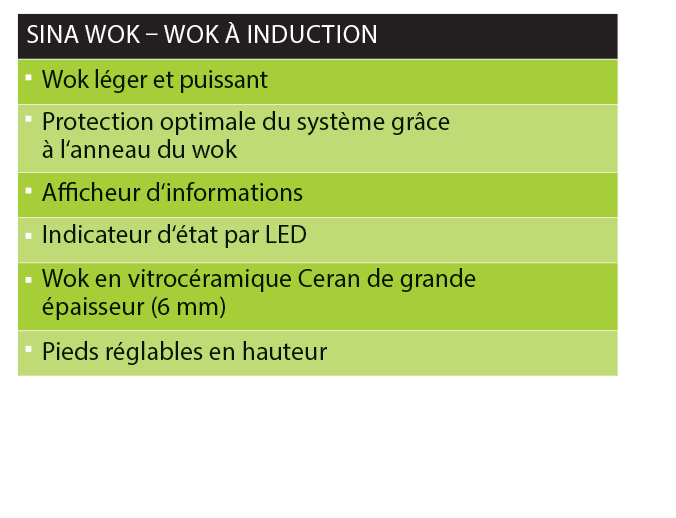 SINA WOK A Induction